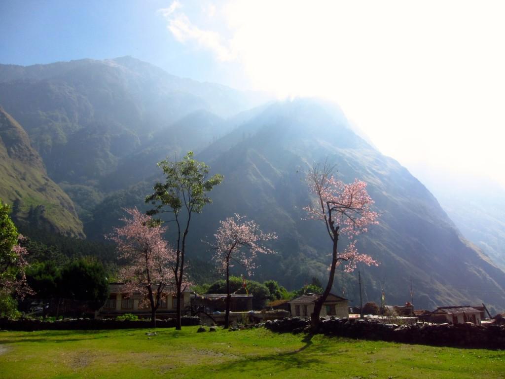 Joyriders Nepal33