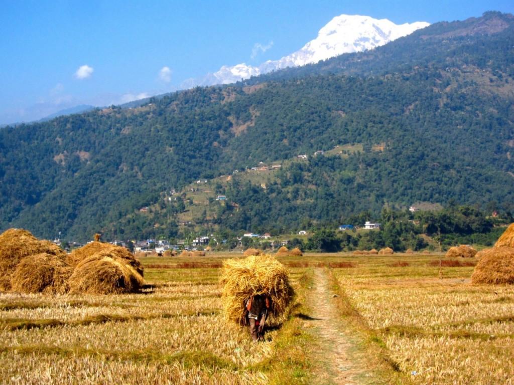 Joyriders Nepal48