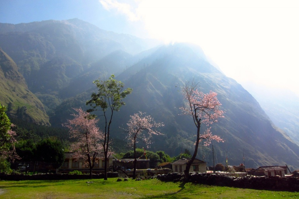 cropped-Joyriders-Nepal33.jpg